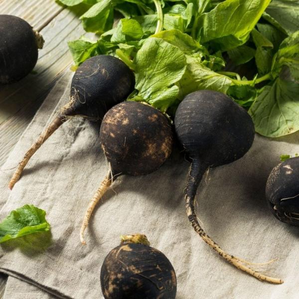 EkoMedica Čierna reďkovka 100% šťava